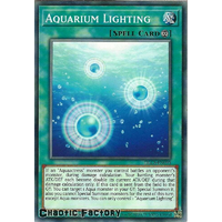 DLCS-EN095 Aquarium Lighting Common 1st Edition NM