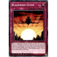 LDS2-EN046 Blackbird Close Common 1st Edition NM
