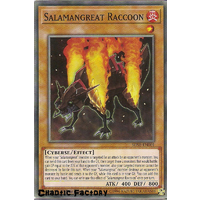 Yugioh SDSB-EN001 Salamangreat Raccoon Common 1st Edition NM